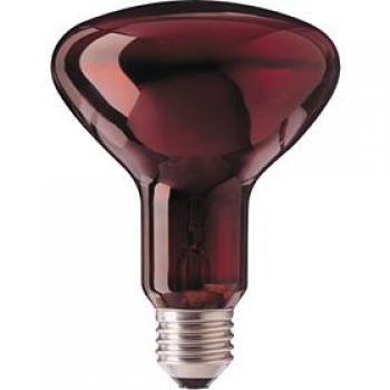 PHILIPS R95 IR Red, 230V/100W, E27 Infrarot