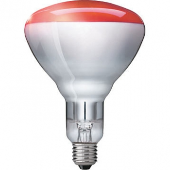 PHILIPS Infrared BR125 IR Red, Infrarotlampe, 230-250V/250W, E27
