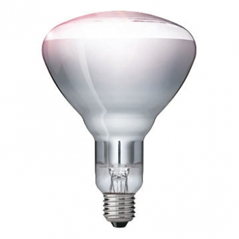 PHILIPS Infrared Infrarotlampe BR125, 230-250V/150W, E27 CLEAR