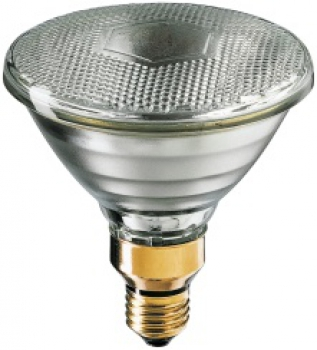 PHILIPS PAR38 Pro, 230V/120W, Flood 30°, EC, E27, 3100cd
